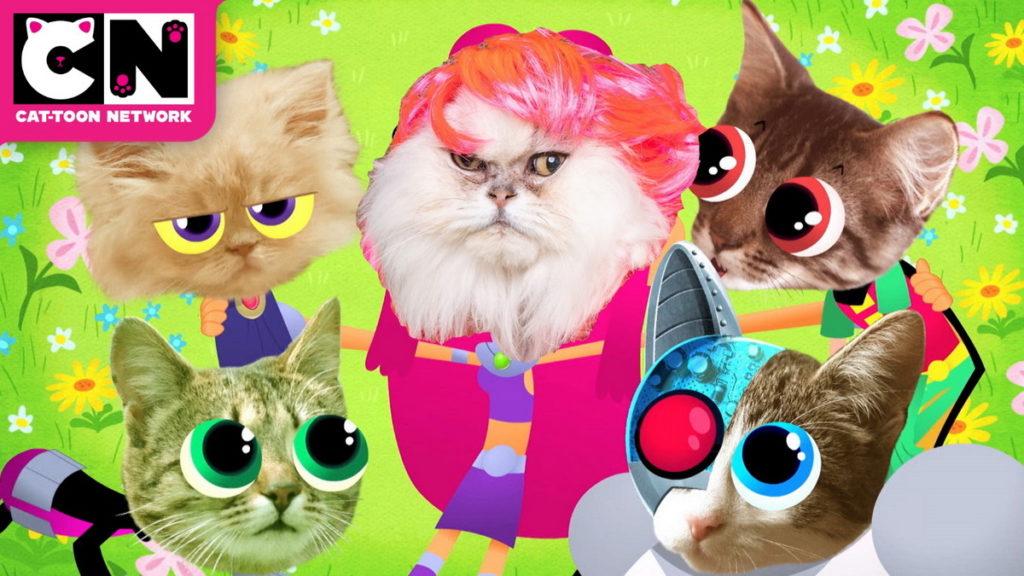 喵喵節快樂!卡通頻道與您一同歡慶「國際貓咪日」!