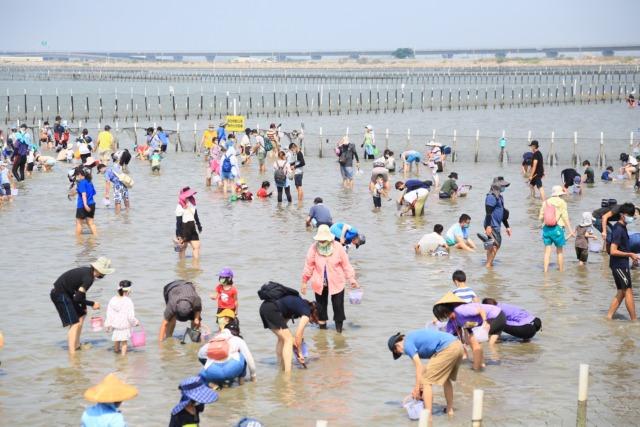 2021臺南七股海鮮節活動開幕  千人潟湖挖文蛤同歡樂