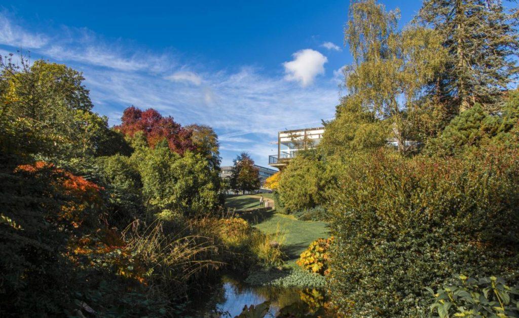 優美的南安普頓大學校園   (圖片提供:英揚留學顧問有限公司)