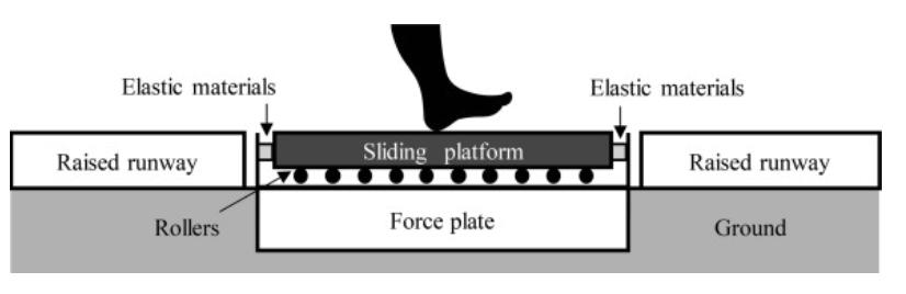 圖片來源: Journal of Biomechanics, 93, 226-230.